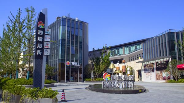 西城后街城市综合体智能化工程